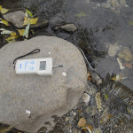 Misurazione del PH nell'acqua